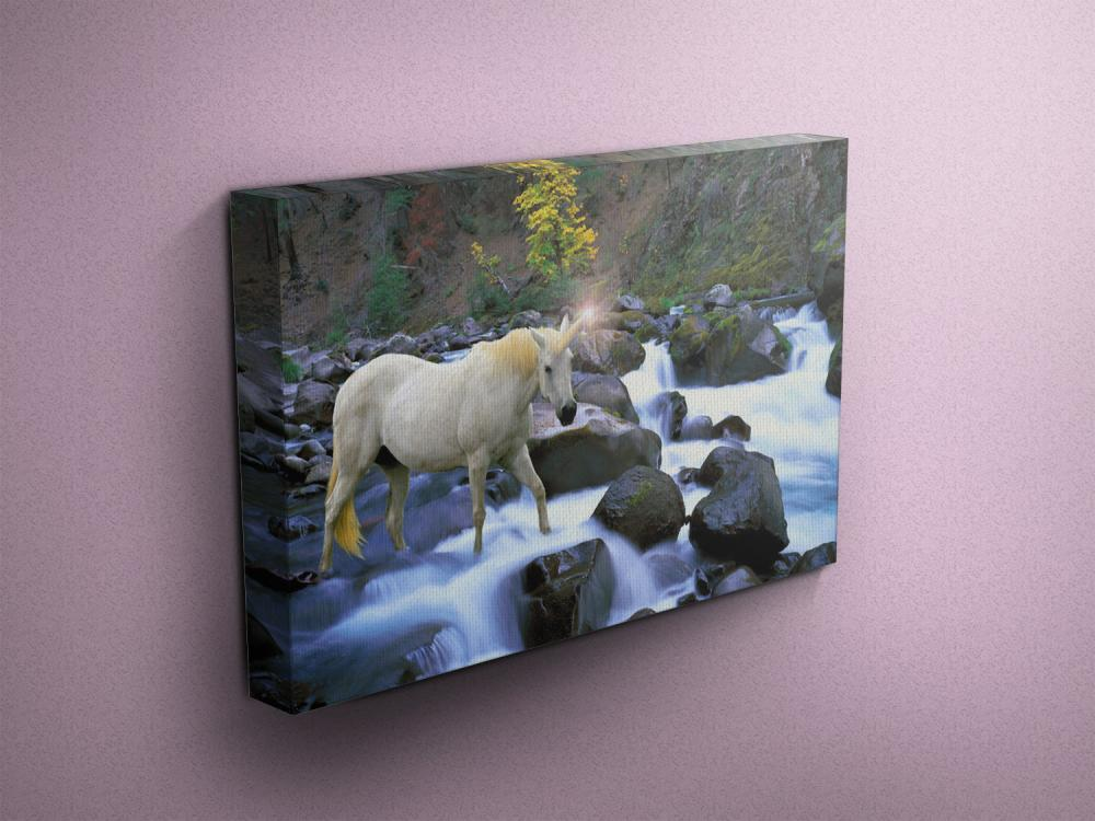 "Unicorn Crossing River - Fine Art Photograph on Gallery Wrapped Canvas - 16x12"" & more"