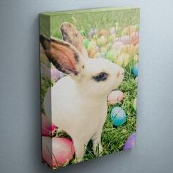 "Easter Bunny - Fine Art Photograph on Gallery Wrapped Canvas - 16x12"" & more"