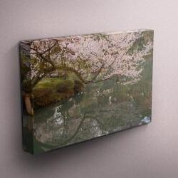 "Cherry Blossoms - Fine Art Photograph on Gallery Wrapped Canvas - 16x12"" & more"