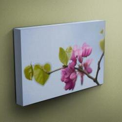 """Pink Blossom - Fine Art Photograph on Gallery Wrapped Canvas - 16x12"""" & more"""